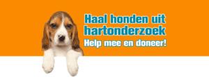 honden uit hartonderzoek